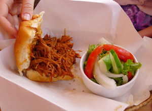 Pulled Pork Sandwich & Salad