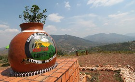 If you love coffee then you're in the right country! Rwanda has some seriously good beans and they don't have to travel far to find […]