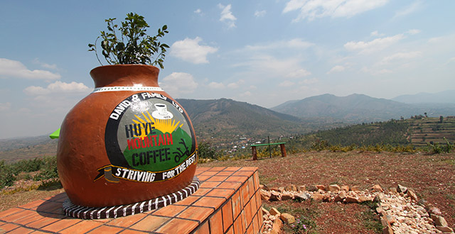 Huye Mountain Coffee Tour